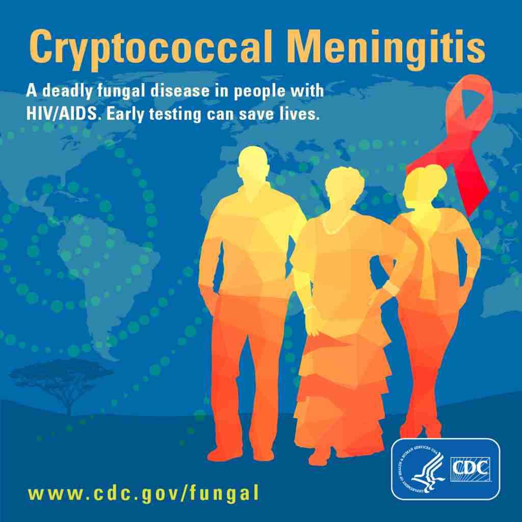 cryptococcal meningitis infographic from cdc